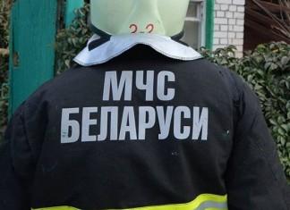 МЧС Беларуси спасает животных