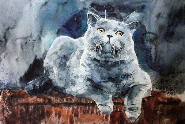 Фото картин котов