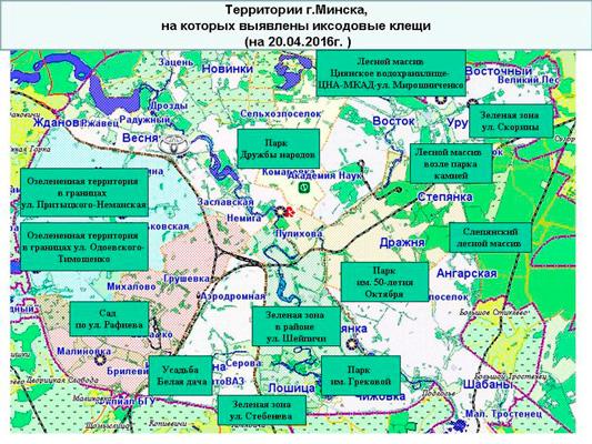 Волгоградская 185 екатеринбург поликлиника регистратура телефон