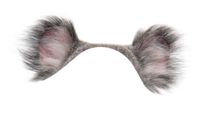 ears-3-2