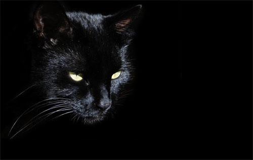 черный2